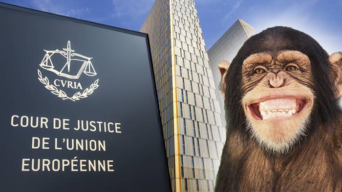 """Χαρακτήρισε """"πίθηκο"""" έναν πολιτικό και δικαιώθηκε (!) στο Ευρωδικαστήριο"""