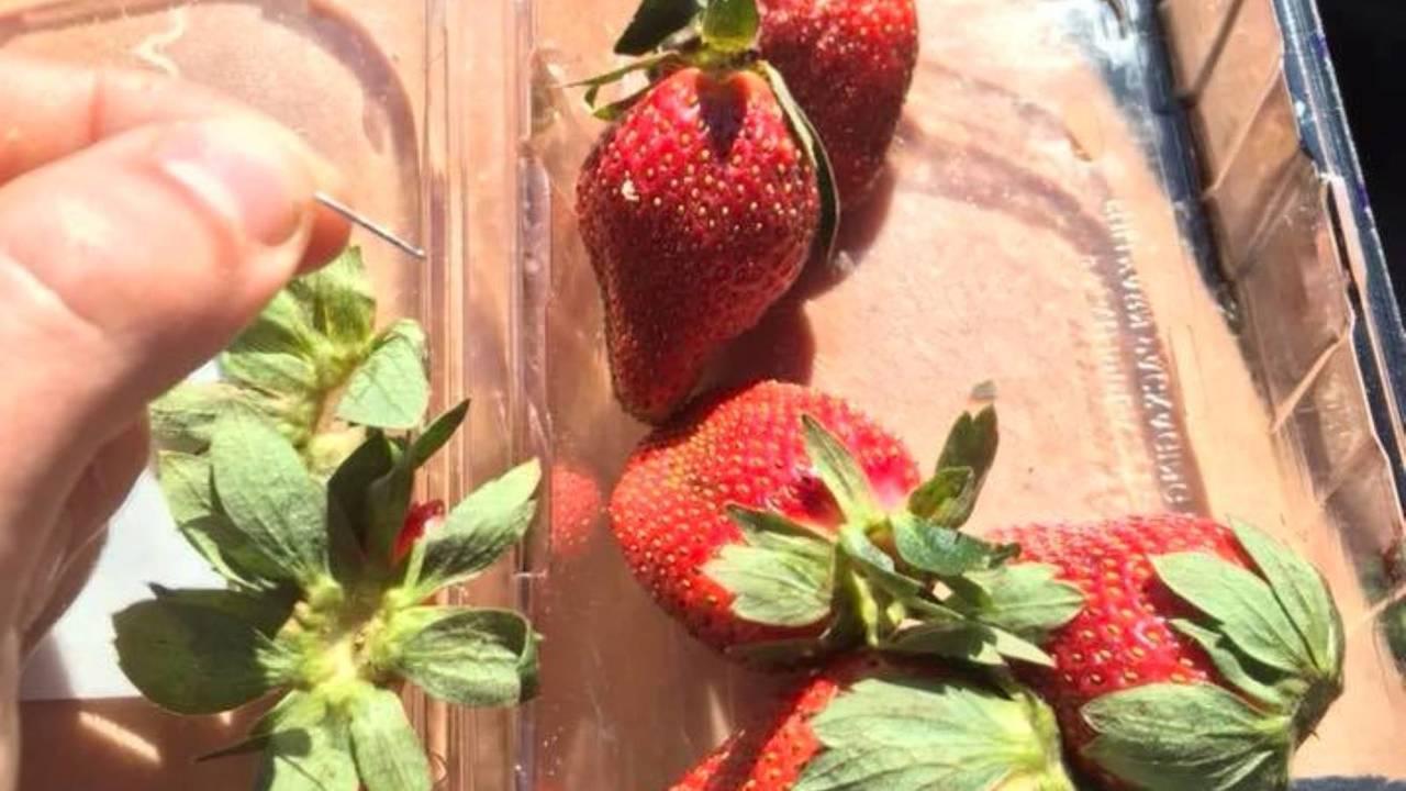 Αυστραλία:Συνελήφθη 50χρονη για τις καρφίτσες στις φράουλες