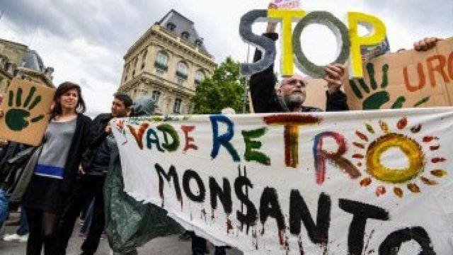 Ακτιβιστές διαδήλωσαν έξω από την έδρα της Monsanto