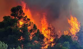 Γενική Γραμματεία Πολιτικής Προστασίας: Πολύ υψηλός κίνδυνος πυρκαγιάς σήμερα