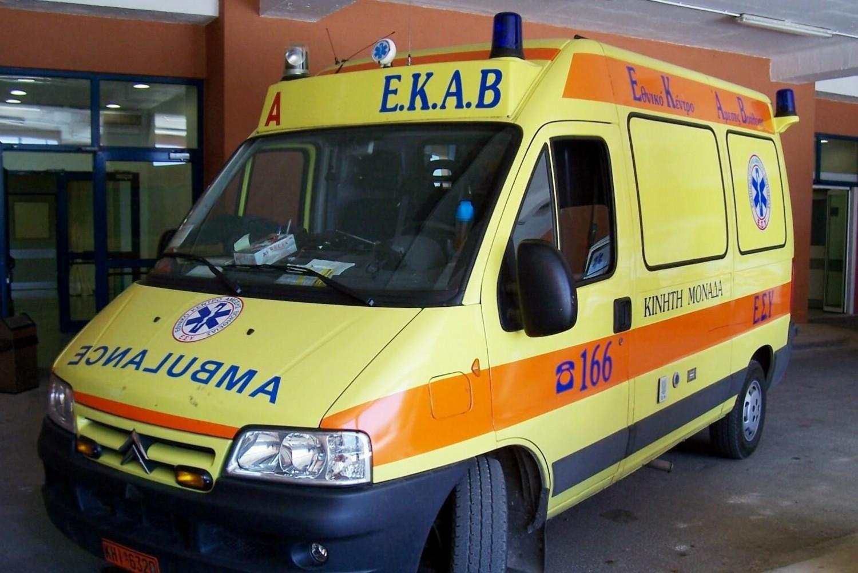 Νεκρό τριών μηνών βρέφος από επίθεση ροτβάιλερ στα Γλυκά Νερά – Ελεύθερη αφέθηκε η μητέρα
