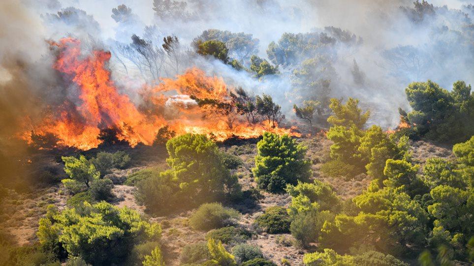 Οριοθετήθηκε η φωτιά στον Υμηττό- Που έχει διακοπεί η κυκλοφορία