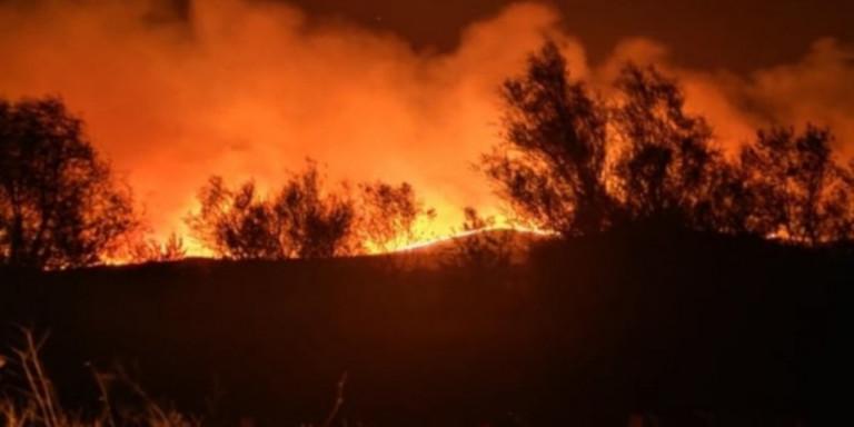 Μεγάλη φωτιά στον Έβρο: Οι φλόγες έφτασαν στο δάσος της Δαδιάς (Βίντεο)