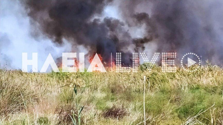 Μεγάλη φωτιά στη Μανωλάδα – Τι προβληματίζει τους πυροσβέστες – ΦΩΤΟ
