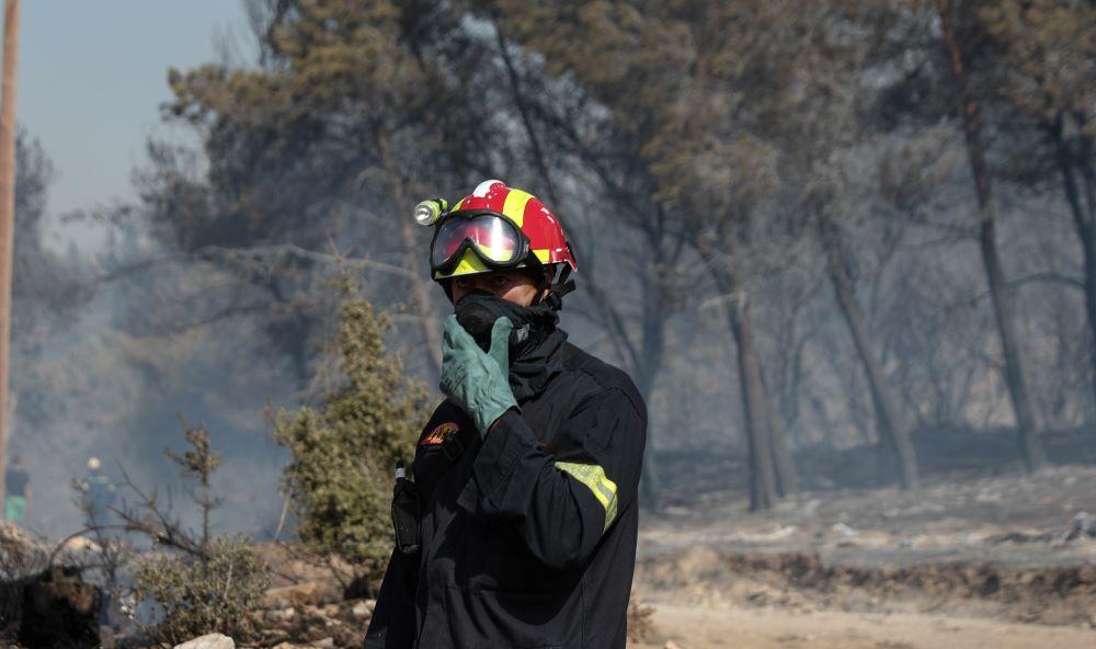 Μεγάλη φωτιά στην Πύλο – Επί ποδός η Πυροσβεστική