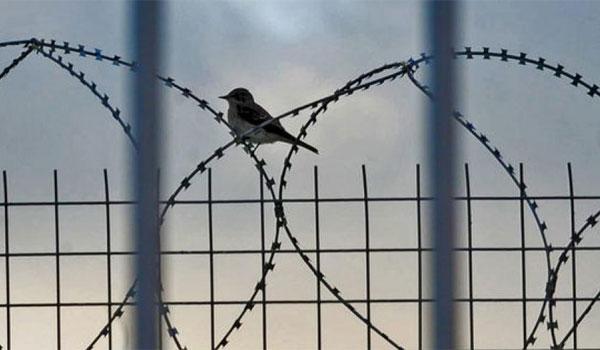 11 μήνες στη φυλακή: 20 ευρώ την ημέρα αποζημίωση δίνει η «τυφλή» Δικαιοσύνη σε βοσκό που φυλακίστηκε γιατί πέρασαν το αλεύρι για …ηρωίνη