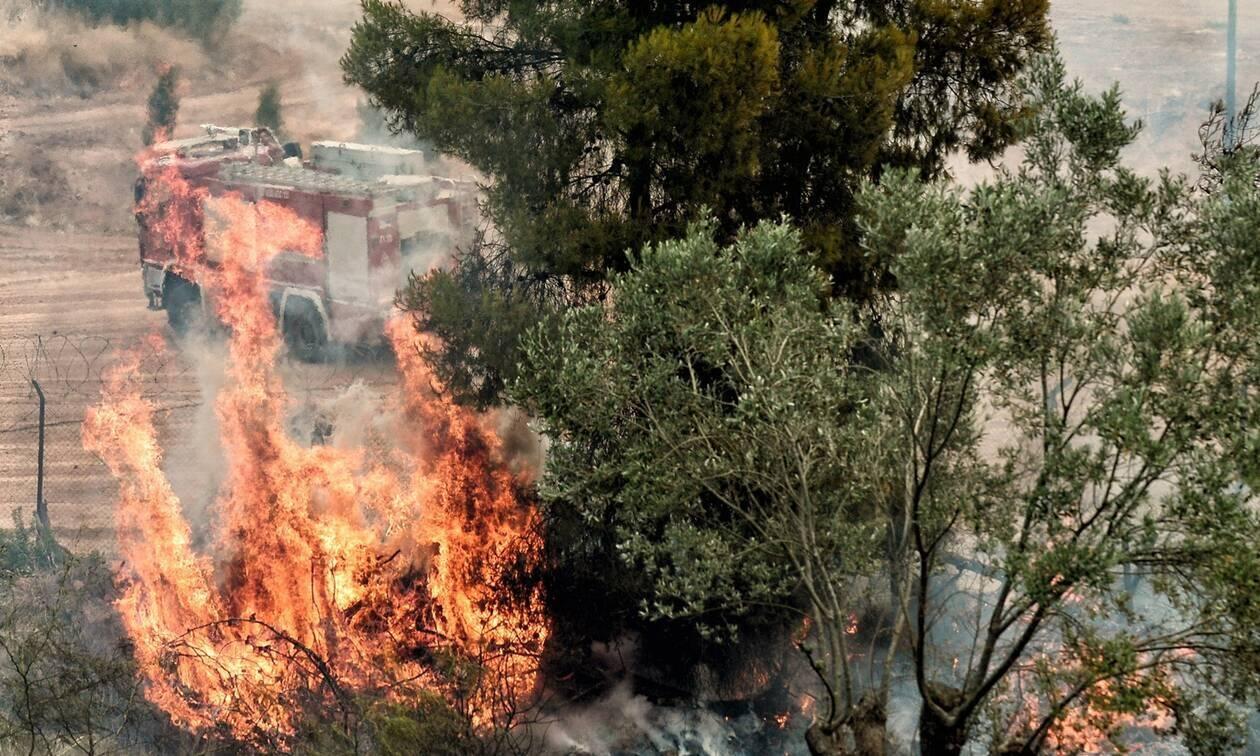 Μεγάλη φωτιά στη Μάνδρα -Επιχειρούν 31 πυροσβέστες και δύο αεροσκάφη