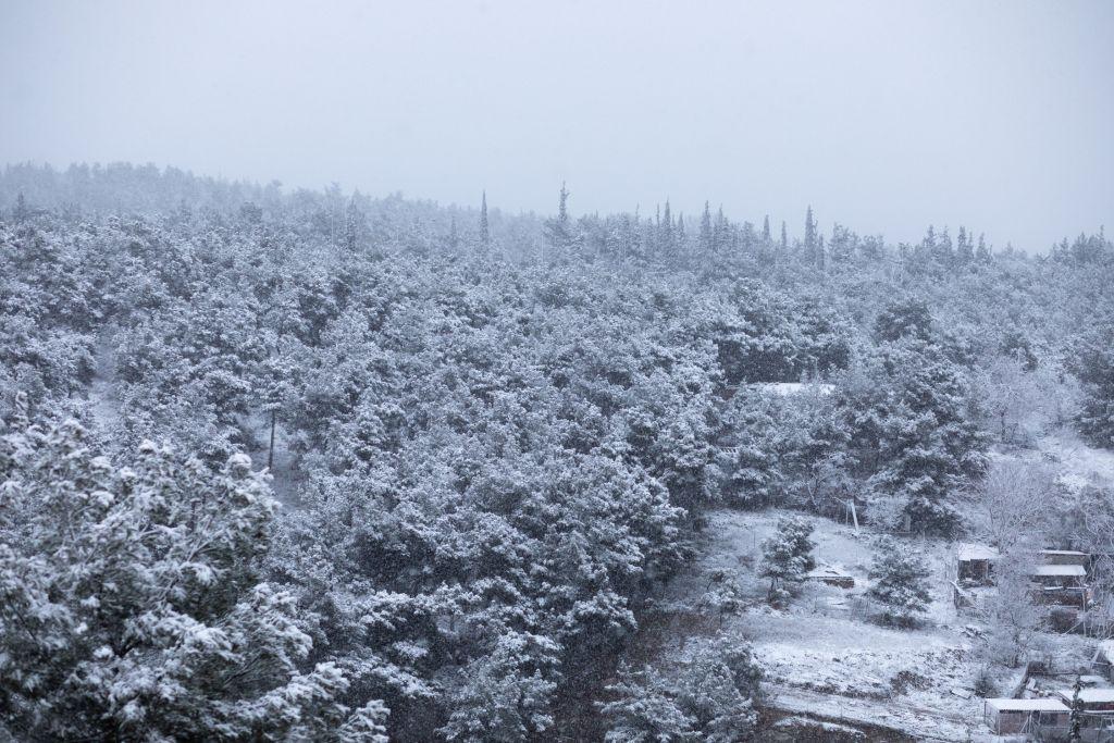 """Σαρώνει τη χώρα ο """"Λέανδρος"""" – Χιόνια και τσουχτερό κρύο – Που είναι κλειστοί οι δρόμοι /ΒΙΝΤΕΟ"""