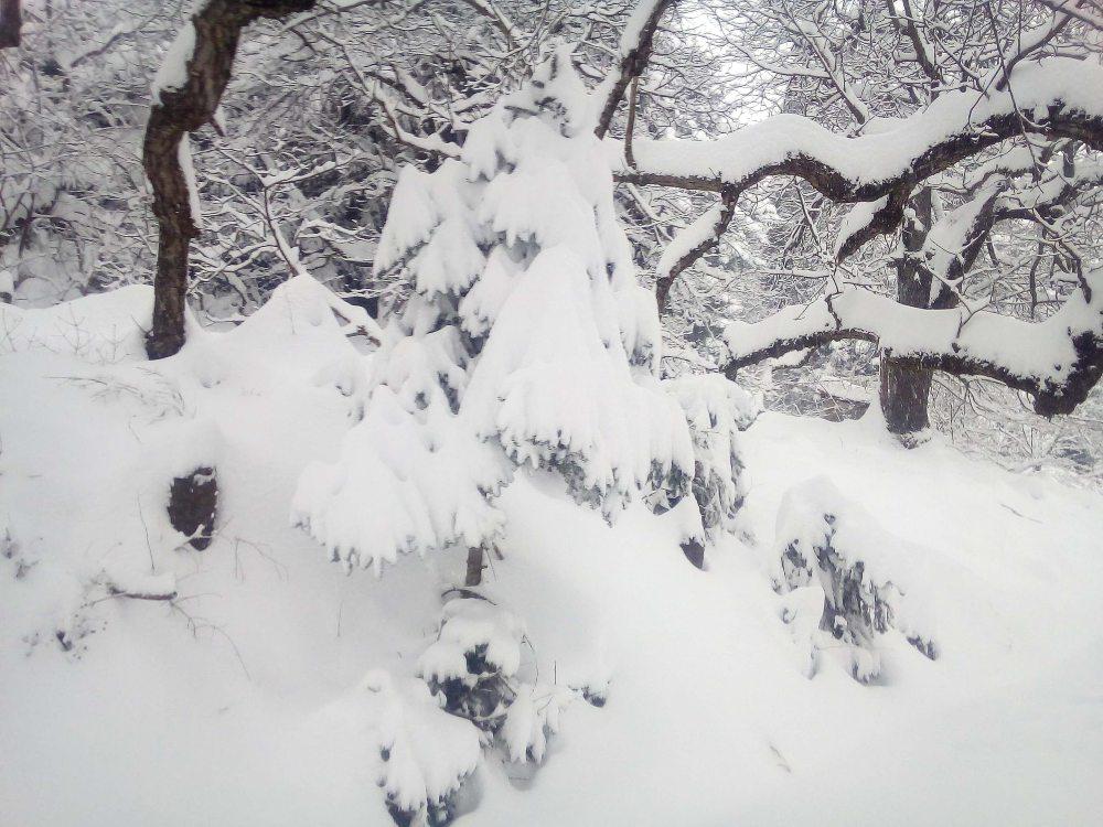 Η δεύτερη φάση της κακοκαιρίας «Μήδεια» από σήμερα Δευτέρα με πυκνές χιονοπτώσεις και στην Αθήνα