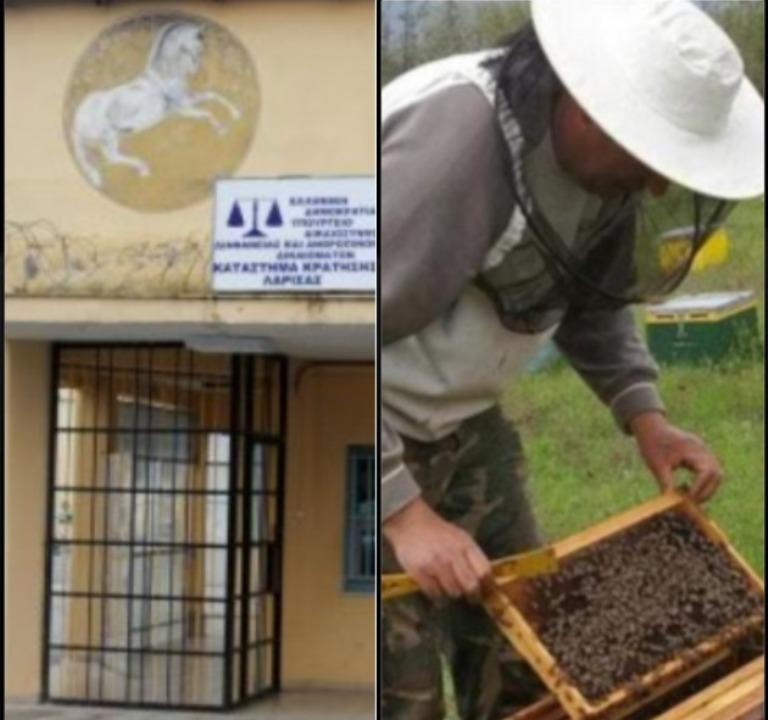 Της φυλακής τα σίδερα βγάζουν… μελισσοκόμους! Πρόγραμμα εκμάθησης ελληνικών και μελισσοκομίας στις φυλακές της Λάρισας