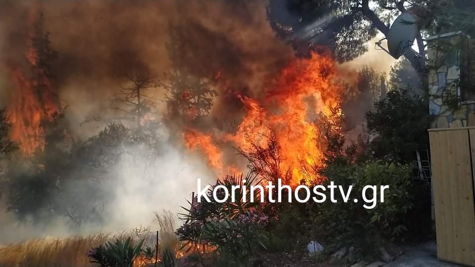 Φωτιά στα Ίσθμια: Δίπλα στα σπίτια οι φλόγες – Έκκληση για εκκένωση