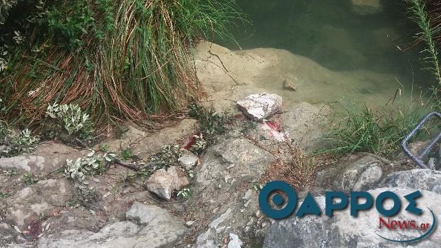 Θάνατος 24χρονης στο Πολυλίμνιο: Ξεκίνησε η δίκη με 40 κατηγορούμενους στο Εφετείο
