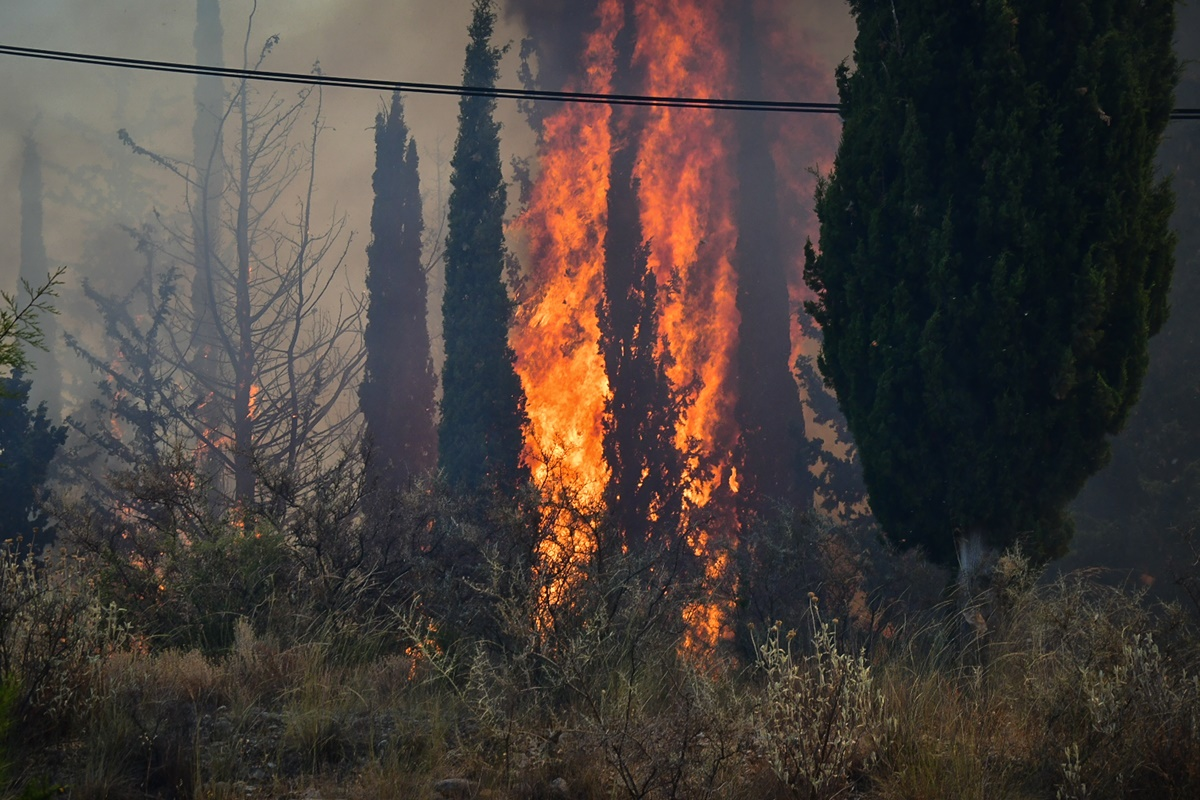 Ρόδος: Ολονύχτια μάχη με τη φωτιά – Χωρίς ρεύμα το νησί – ΦΩΤΟ