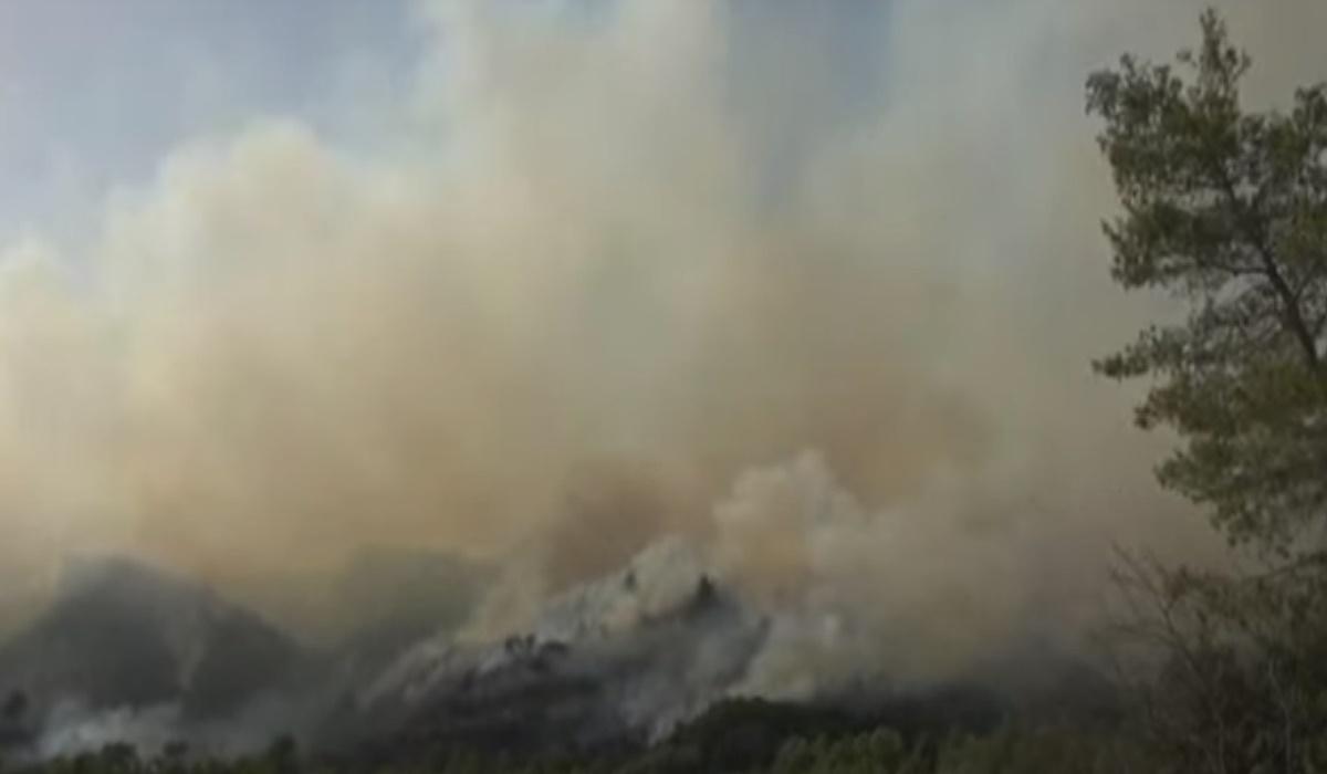 Μεγάλη φωτιά στο Αγρίνιο: Εκκενώνονται προληπτικά δύο χωριά – ΒΙΝΤΕΟ