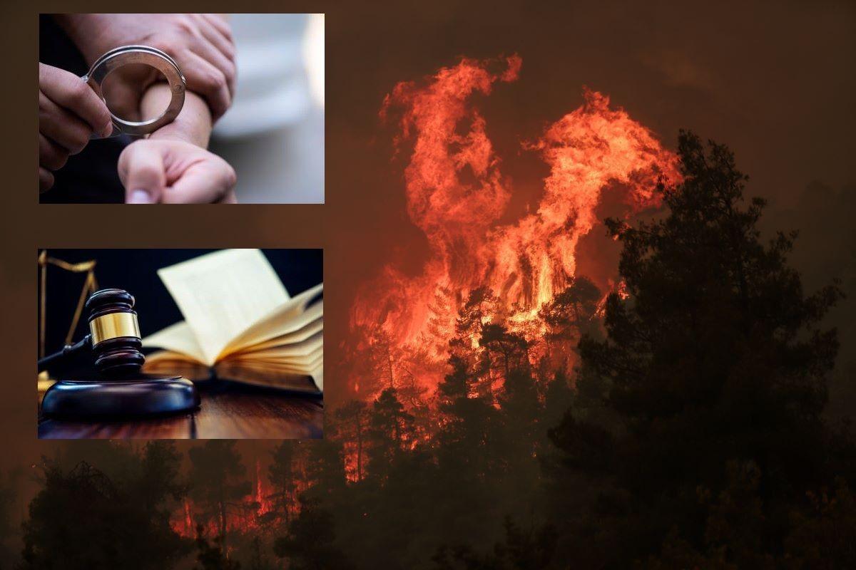 «Τρέχουν» οι έρευνες για τις καταστροφικές πυρκαγιές – Βαρύς ο «πέλεκυς» της δικαιοσύνης για τους εμπρηστές