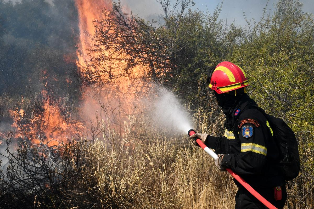 Φωτιά στα Βίλια: Κάηκαν σπίτια στον οικισμό Προφήτης Ηλίας – 21 εναέρια μέσα στη μάχη με τις φλόγες