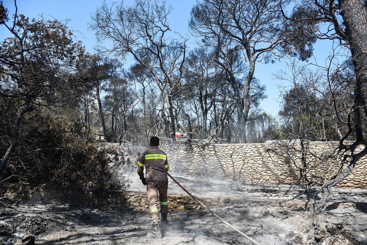 Φωτιά στην Αχαΐα: Συνεχίζεται η μάχη με τις φλόγες – 20 καμένα σπίτια, ένας τραυματίας με εγκαύματα